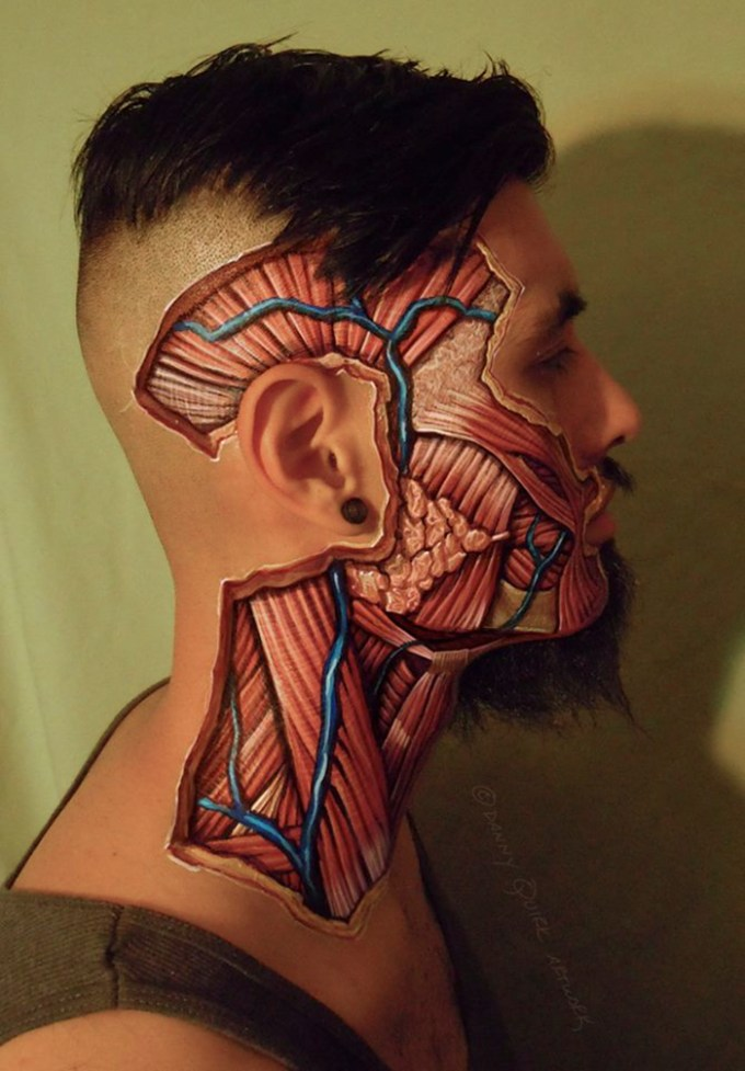 Realistic Anatomical Paintings Reveal The Structures That Lie Beneath Our Skin