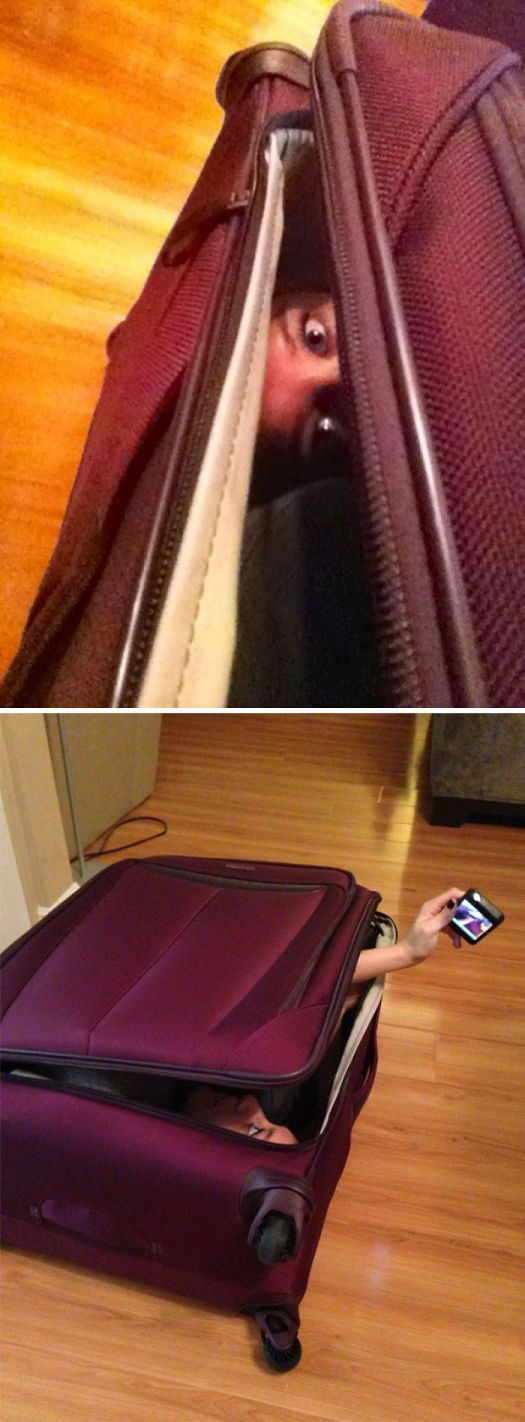 My Husband Challenged Me To See If I Could Fit In My New Suitcase... I Sent Him This Response