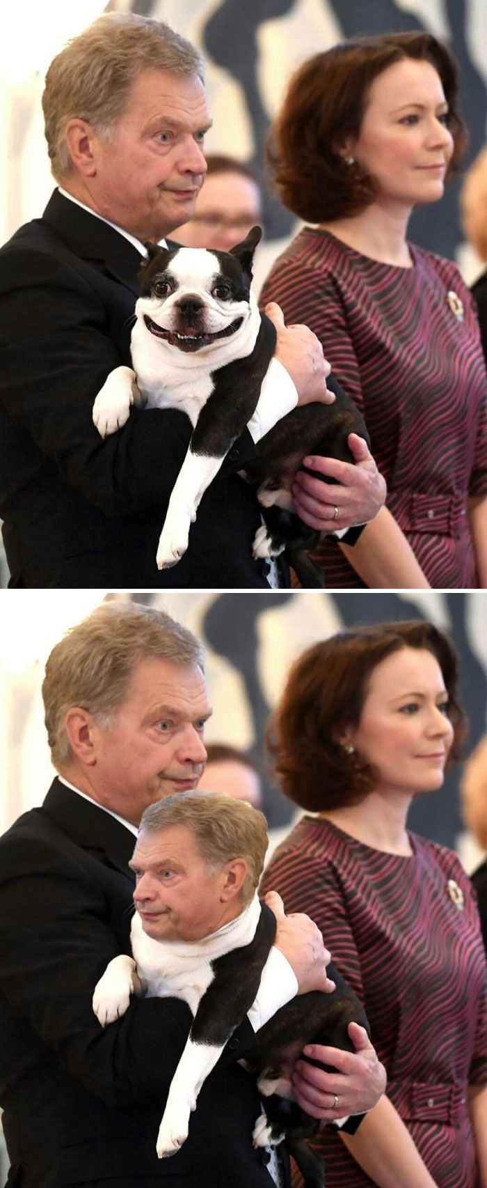 The Finnish President And His Dog