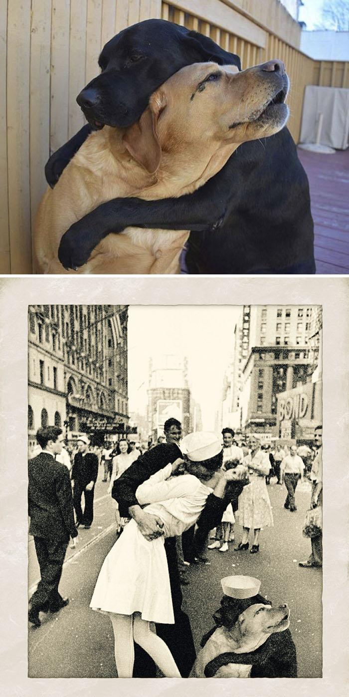 2 Dogs Hugging
