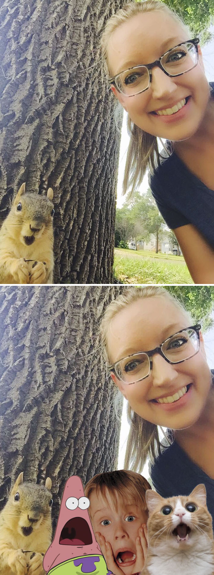 A Squirrel Surprised By A Selfie