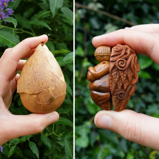 Avocado Stone Face
