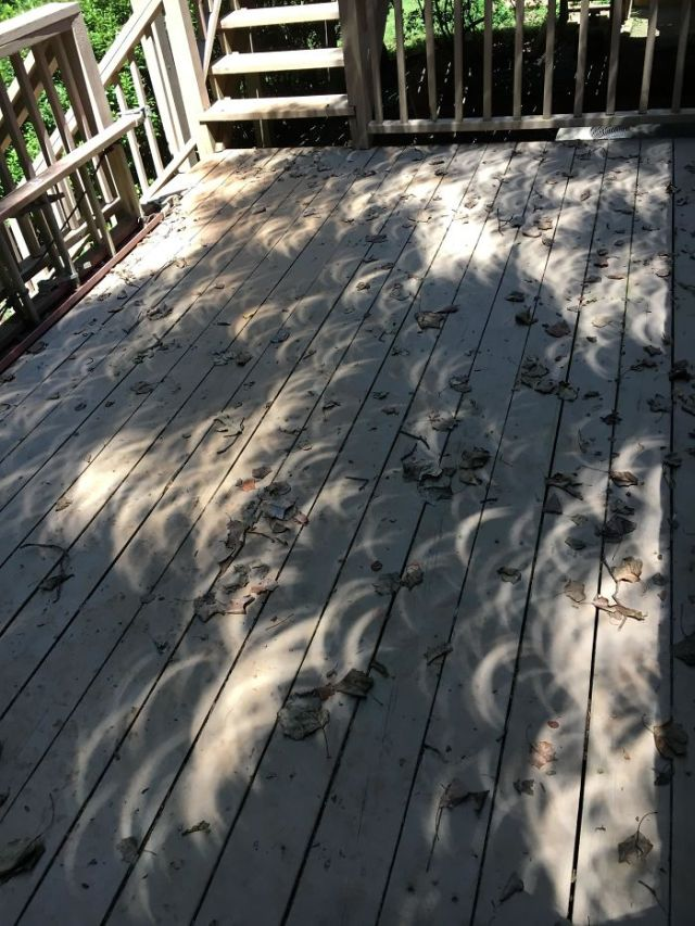 The Eclipse Is Leaving Very Weird Shadows On My Deck!