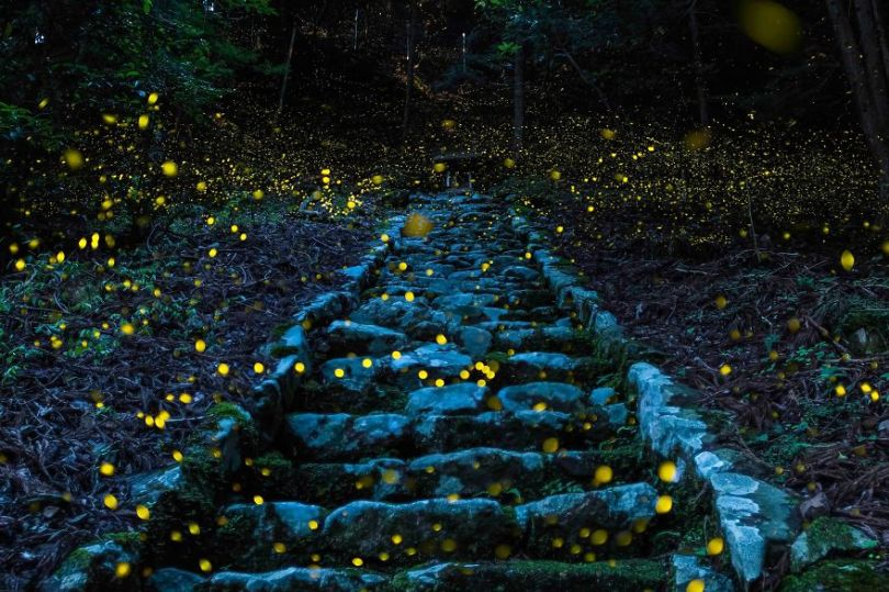 national geographic travel photographer of the year 2017 winners 5 5982ef305ed10  880 - Vencedores do Concurso de fotografia da National Geographic Travel 2017
