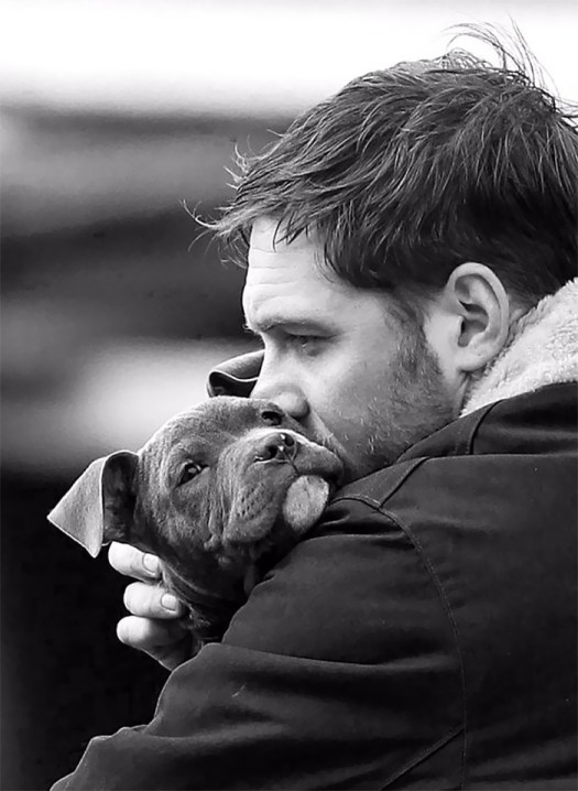 Love-for-dogs-tom-hardy