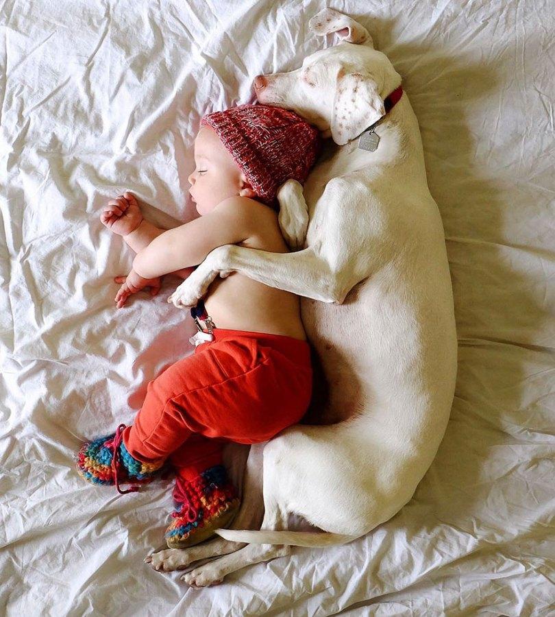 abusado-salvamento-cão-amor-criança-nora-elizabeth-spence-31
