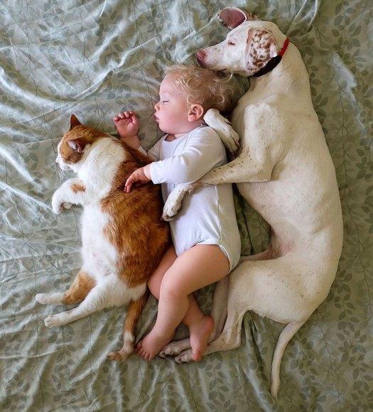 abused-rescue-dog-love-child-nora-elizabeth-spence-43
