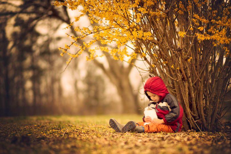 10 Fall photos to get you in the Autumn mood 59fc9455931fb  880 - 35 fotos de Outono que o farão querer se tornar um fotógrafo