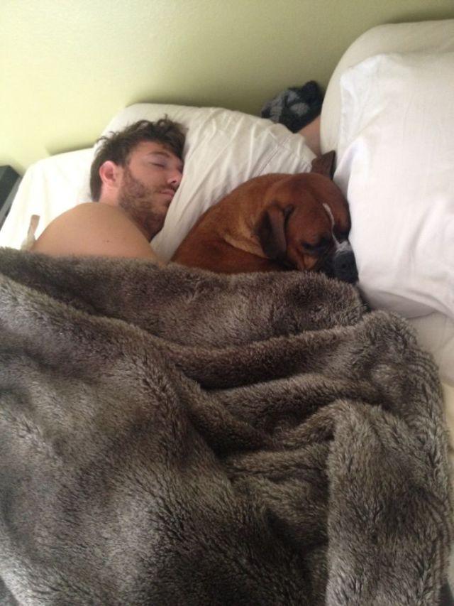 Me fui a trabajar, y se me olvidó el móvil. Solo tardé diez minutos en regresar y ésta perra ya estaba en la cama con mi novio