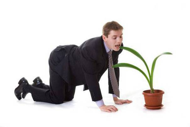 Man In Doggystyle Position Ready To Eat A Leaf