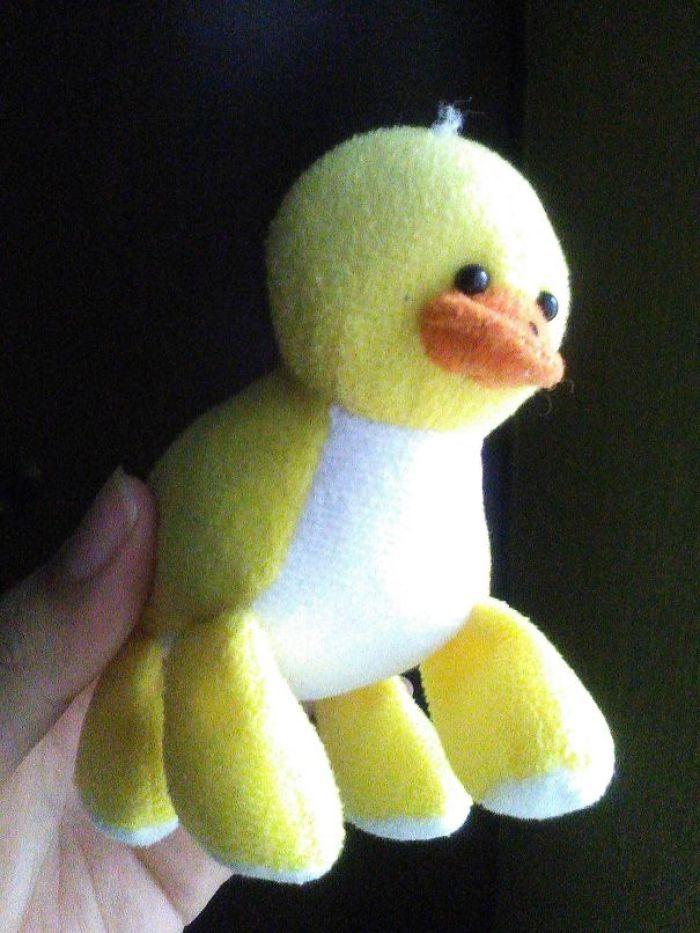 My Four-Legged Duck