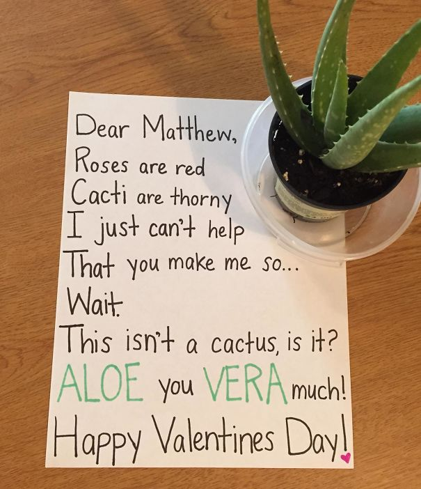 I'm New To Having An So On Valentine's Day... Am I Doing This Right?