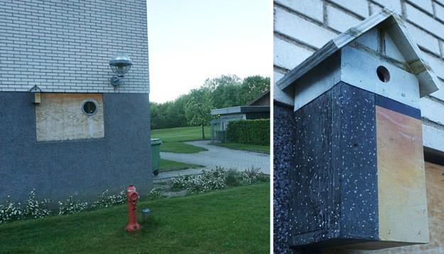 I-make-camouflage-birdhouses-to-keep-the-city-birds-out-of-sight-5a7424359c6ff__880 I Make Camouflage Birdhouses To Keep The City Birds Out Of Sight Art Design Random