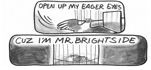 pigeon-comics-mr-brightside-the-killers-3a This Pigeon Comics Version Of The Killers' 'Mr Brightside' Is So Good It Will Get Stuck In Your Head Design Random
