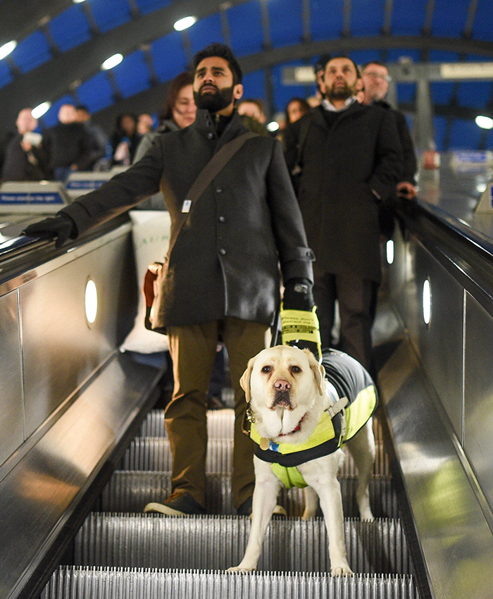 blind-man-guide-dog-no-one-offers-train-seat-london-amit-patel-23-5abdecbd1aec6__700 Blind Man Left In 'Tears' After Nobody Gave Up Their Seat For Him And His Guide Dog On The Train Design Random