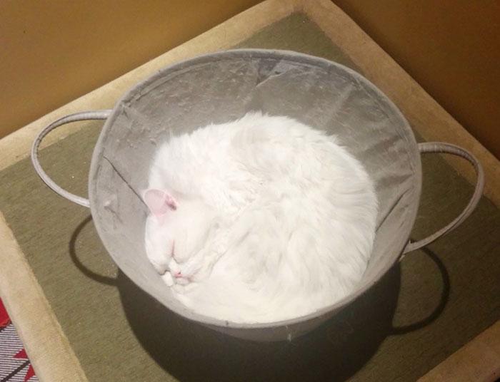 A Bowl Of Flour