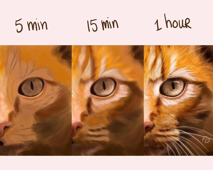 The Artist Shows How Much Time She Spends Creating Her Drawings.