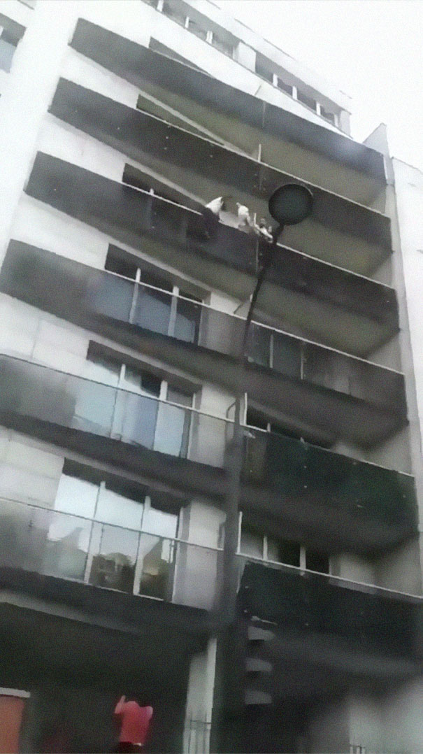 man-rescue-boy-mamoudou-gassama-paris-7-5b0bb08a0f352__605 African Immigrant Climbs 4 Storeys With His Bare Hands In Less Than 30 Secs To Save 4-Year-Old Dangling From Balcony Design Random