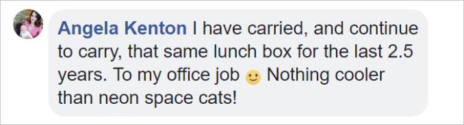 space-cat-lunchbox-work-ryker-david-pendragon 20