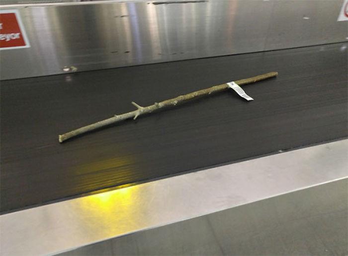 Alguien registró una estación en el aeropuerto [19659003] fuente </p data-recalc-dims=