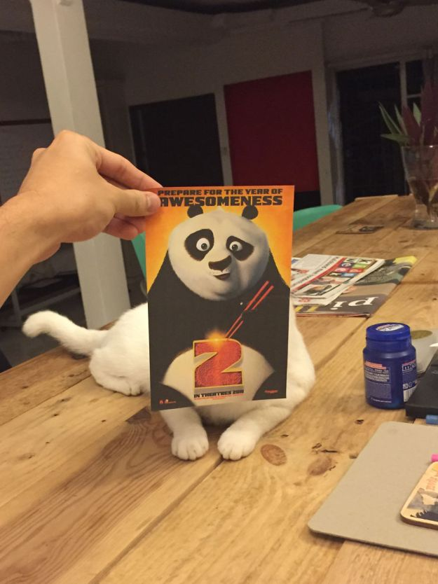 """panda-5b3b82f1dcaa0__880 Photographer Follows Cats Around To """"Insert"""" Them Behind Famous Movie Posters, And The Result Is Purrfect Design Random"""