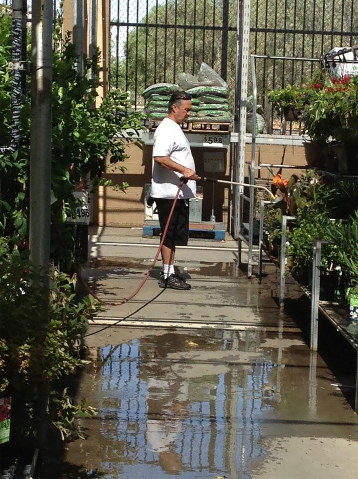 Entonces mi abuelo vio plantas marchitas en Walmart y comenzó a regarlas (no es un empleado)