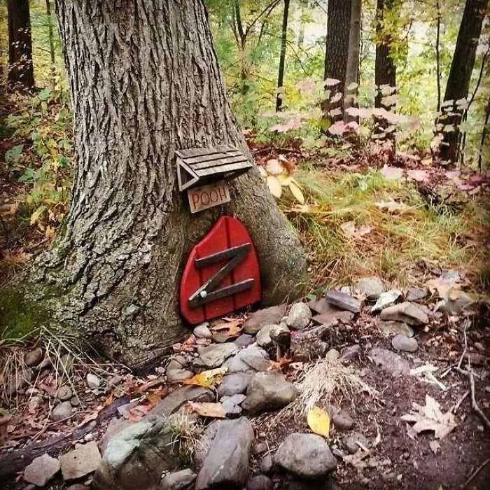Encontré esto en el bosque Woods While Trail Riding