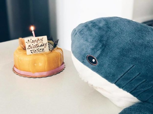 BZXEoz3AVOm-png__700 IKEA Released An Adorable Plush Shark And People Are Losing Their Minds Over It Design Random