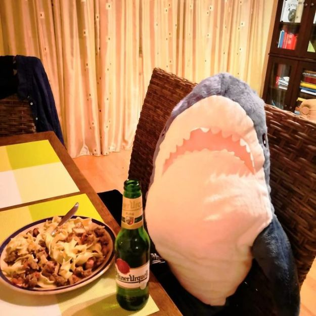 BpIaO3ZAEDS-png__700 IKEA Released An Adorable Plush Shark And People Are Losing Their Minds Over It Design Random