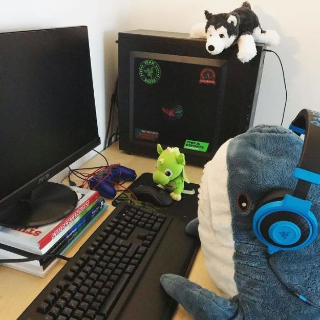BpUQZkijQcy-png__700 IKEA Released An Adorable Plush Shark And People Are Losing Their Minds Over It Design Random