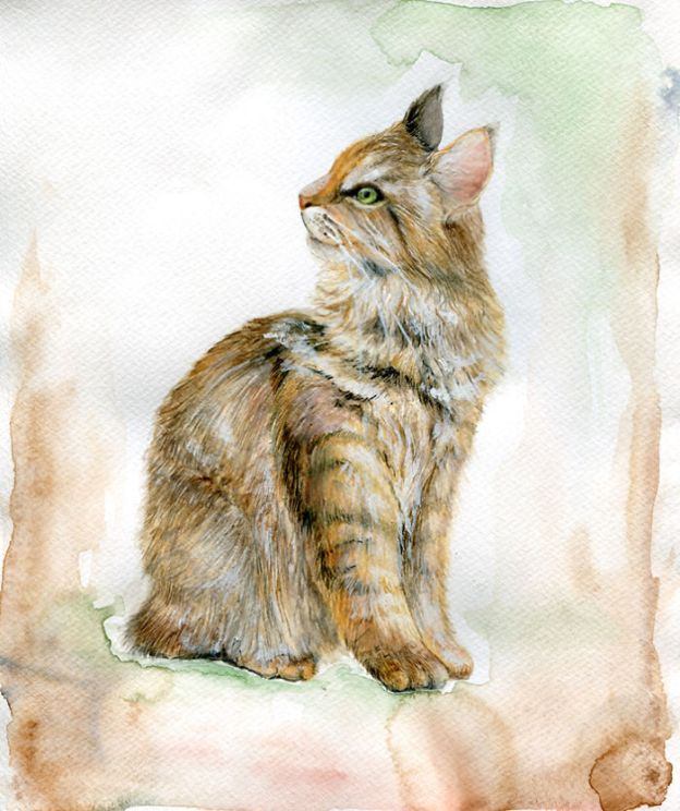 cat10_big-5bbc536abd61b__700 I Challenged Myself To Paint 12 Cats In Different Art Styles Art Design Random