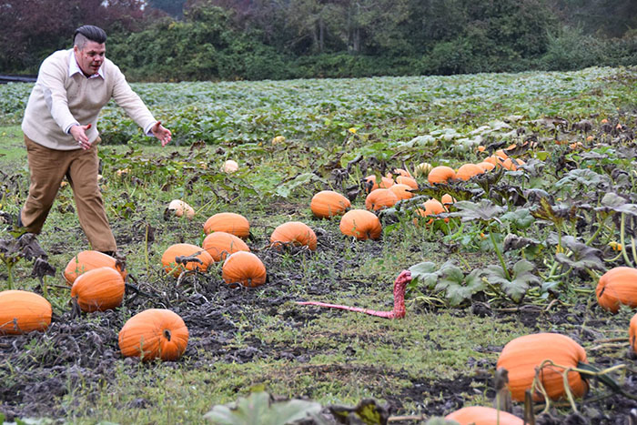 This Is The Most Terrifying Maternity Photo Shoot We've Ever Seen (WARNING: Some Images Might Be Too Brutal) funny maternity photoshoot alien pumpkin field todd cameron li carter 13 5bbdc4bce349c  700