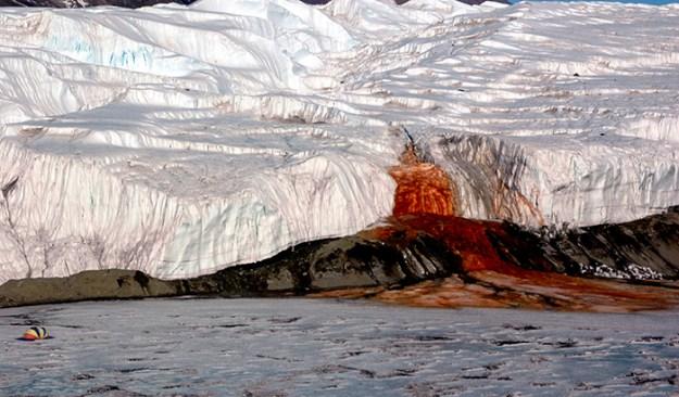 interesting-antarctica-facts-south-pole-5bd1c169891e6__700 27 Unbelievable Facts About Antarctica That Are 100% True Design Random