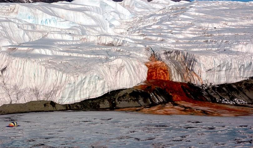 interesting antarctica facts south pole 5bd1c169891e6  700 - 14 fatos sobre a Antártica que você provavelmente ainda não sabia