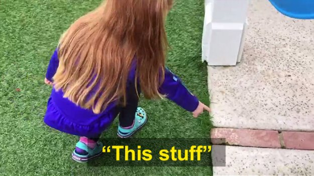 schoolgirl-tells-teacher-father-growing-weed-27 Daughter Tells Her Teachers That Dad Is Growing 'A Ton Of Weed' At Home, And It Escalates Hilariously Design Random