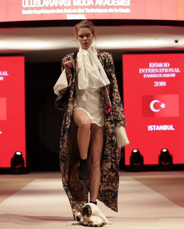 stray-cat-istanbul-fashion-show-vakko-esmod-5bd6be3c1f96b__700 Random Cat Crashes Fashion Show, Fights Models Design Random