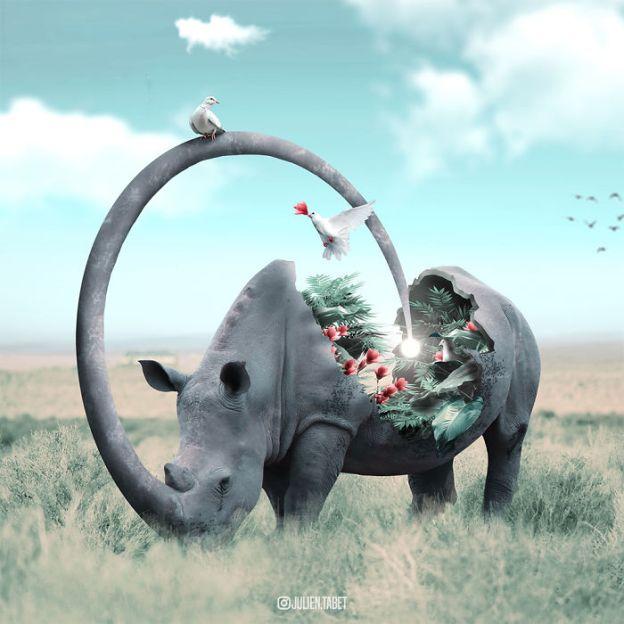 Rhino-5bdb8dda9f725__700 Here's How I Imagine Animals Behave When You Aren't Looking (10+ Pics) Design Random