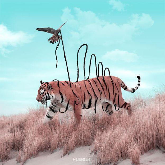 Tiger-5bdb8e276eda6__700 Here's How I Imagine Animals Behave When You Aren't Looking (10+ Pics) Design Random