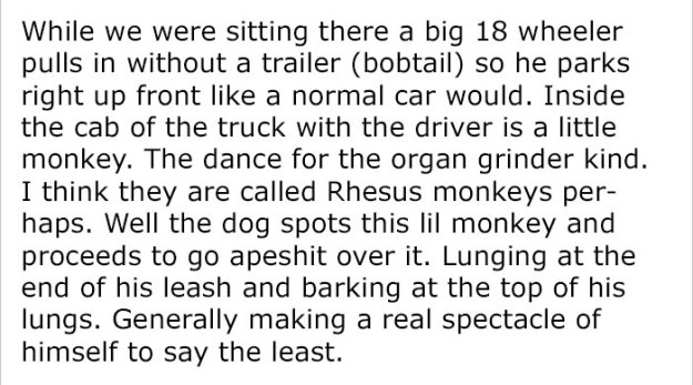 monkey-dog-fight-truck-driver-story-4-5be93416db420__700 Guy Asks People To Share Unbelievable Things That Happened In Public And His Own Story Tops Everything Design Random