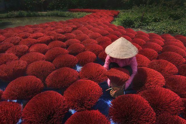 El acceso de la fortuna, Vietnam (Splash of Colors)