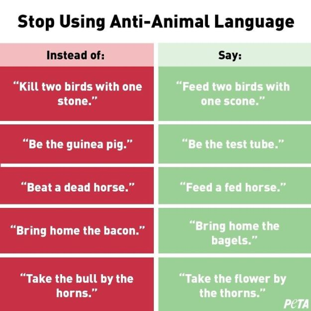 "1-5c07e528d5868__700 PETA Asks People To Stop Using ""Anti-Animal"" Phrases And People Can't Help But Laugh Design Random"
