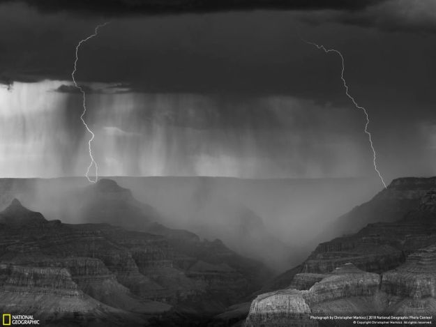 national-geographic-nature-photographer-of-the-year-2018-winner-60-5c0a35f9701af__880 50 Of The Most Incredible Photos Of The National Geography Photo Contest Of 2018 Design Photography Random