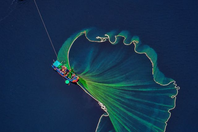 Recogiendo gambas en el mar, por Tuan Nguyen