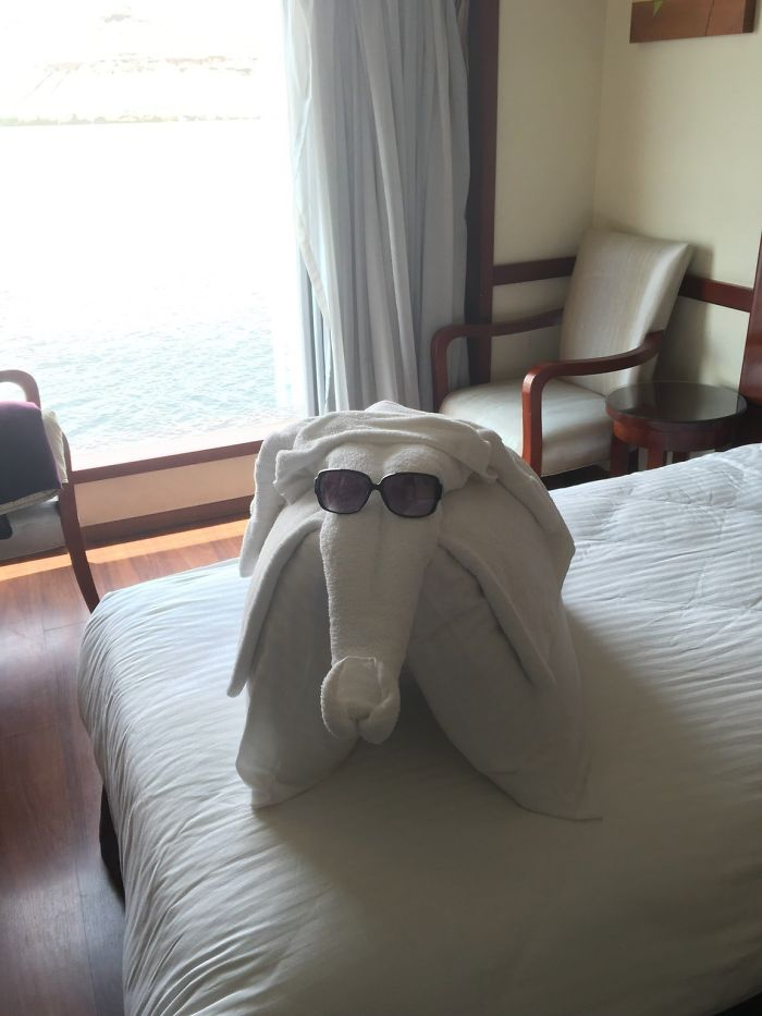 Hotel Maid Clearly Found My Sunglasses