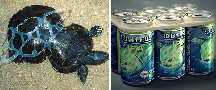 Brewery Creates Edible Six-Pack Rings To Avoid Plastic Pollution