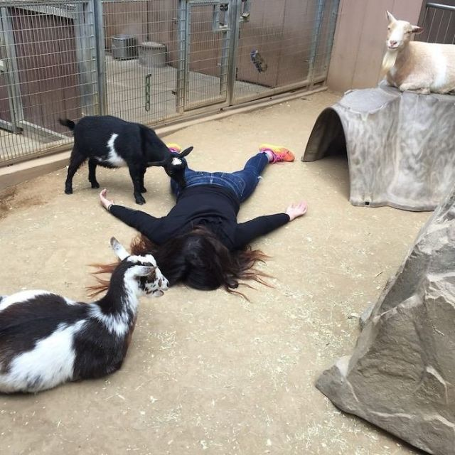 Zoo interactivo de San Diego