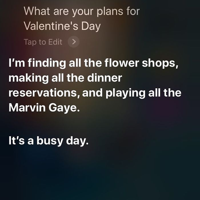 Occasionally I Like To Ask Siri About His Hopes And Dreams