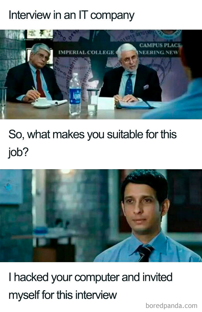Funny Answers To Why Should I Hire You : funny, answers, should, Funniest, Interview, Memes, Bored, Panda