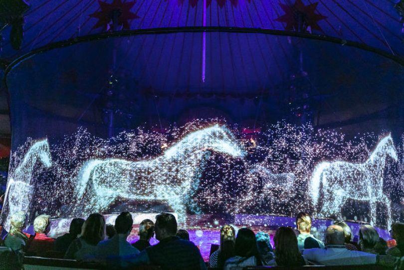 animal holograms circus roncalli germany 2 5cf652b990d82  700 - Circo alemão usa hologramas em vez de animais vivos