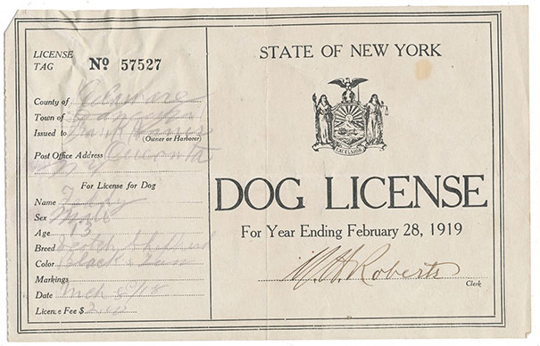 "Found A Dog License From 1919 In ""The Oregon Trail"""